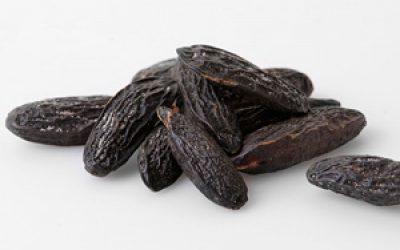 La fève Tonka – la Coumarine