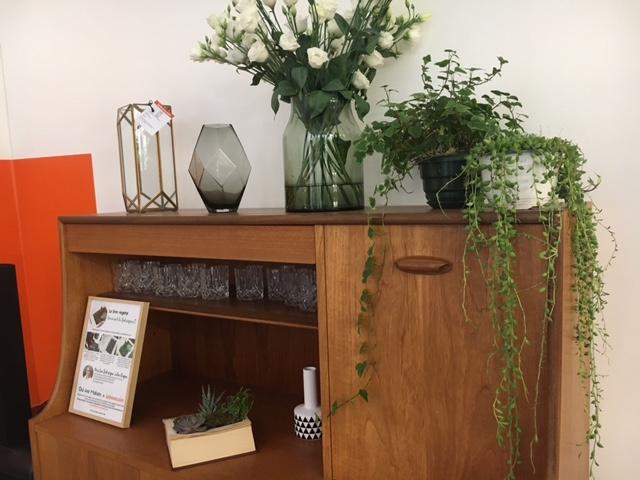meuble vintage plante