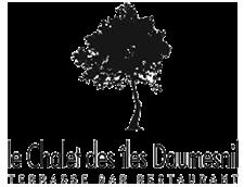 Le Chalet des iles Daumesnil