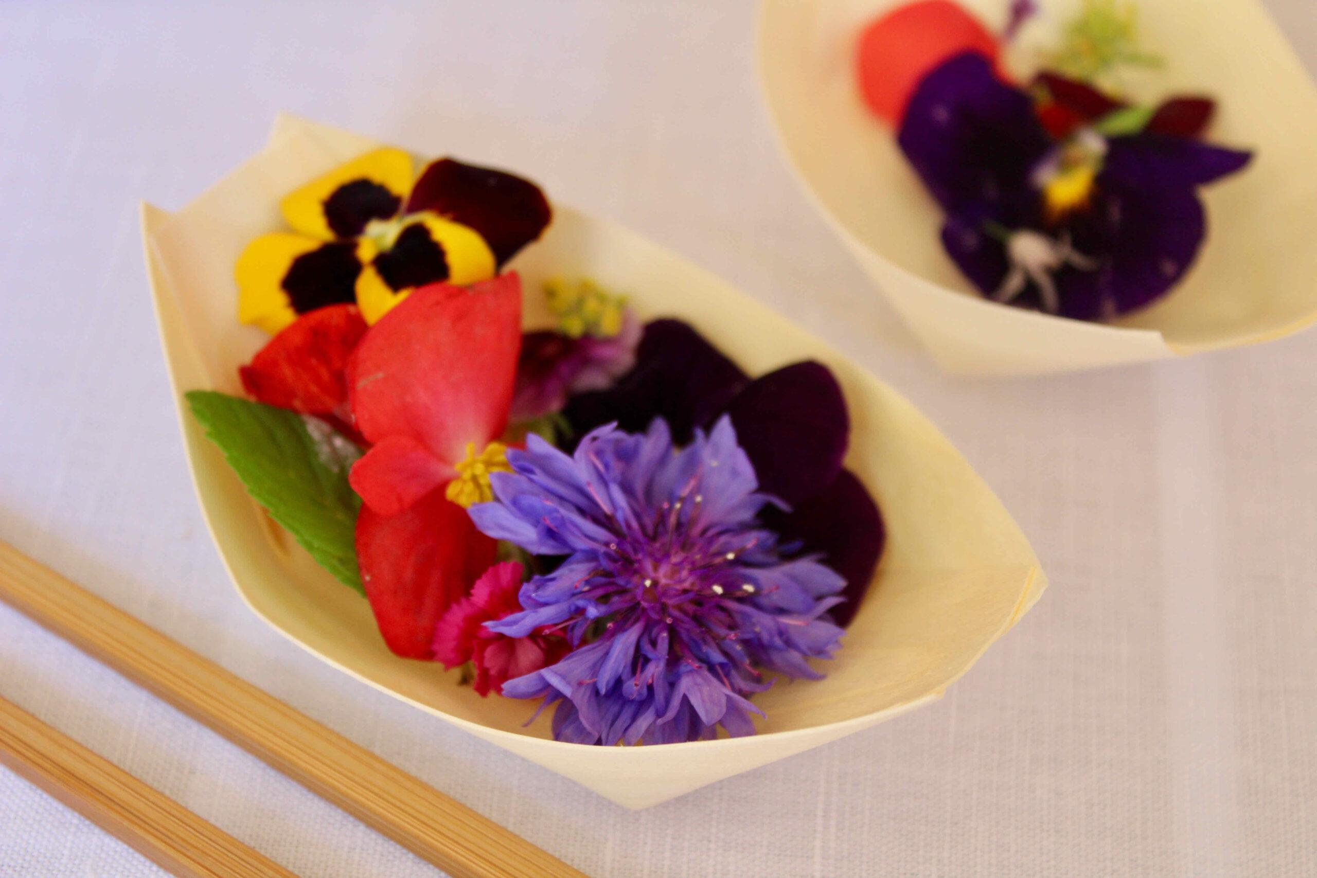 Dégustation de fleurs comestibles
