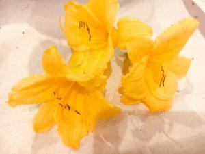 animation bar à fleurs comestibles