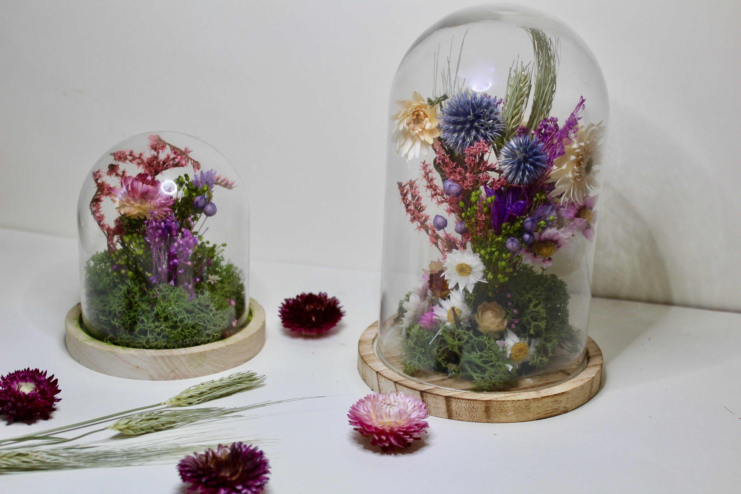 cloche de fleurs séchées