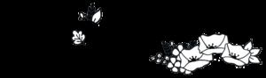 logo hello Lucette