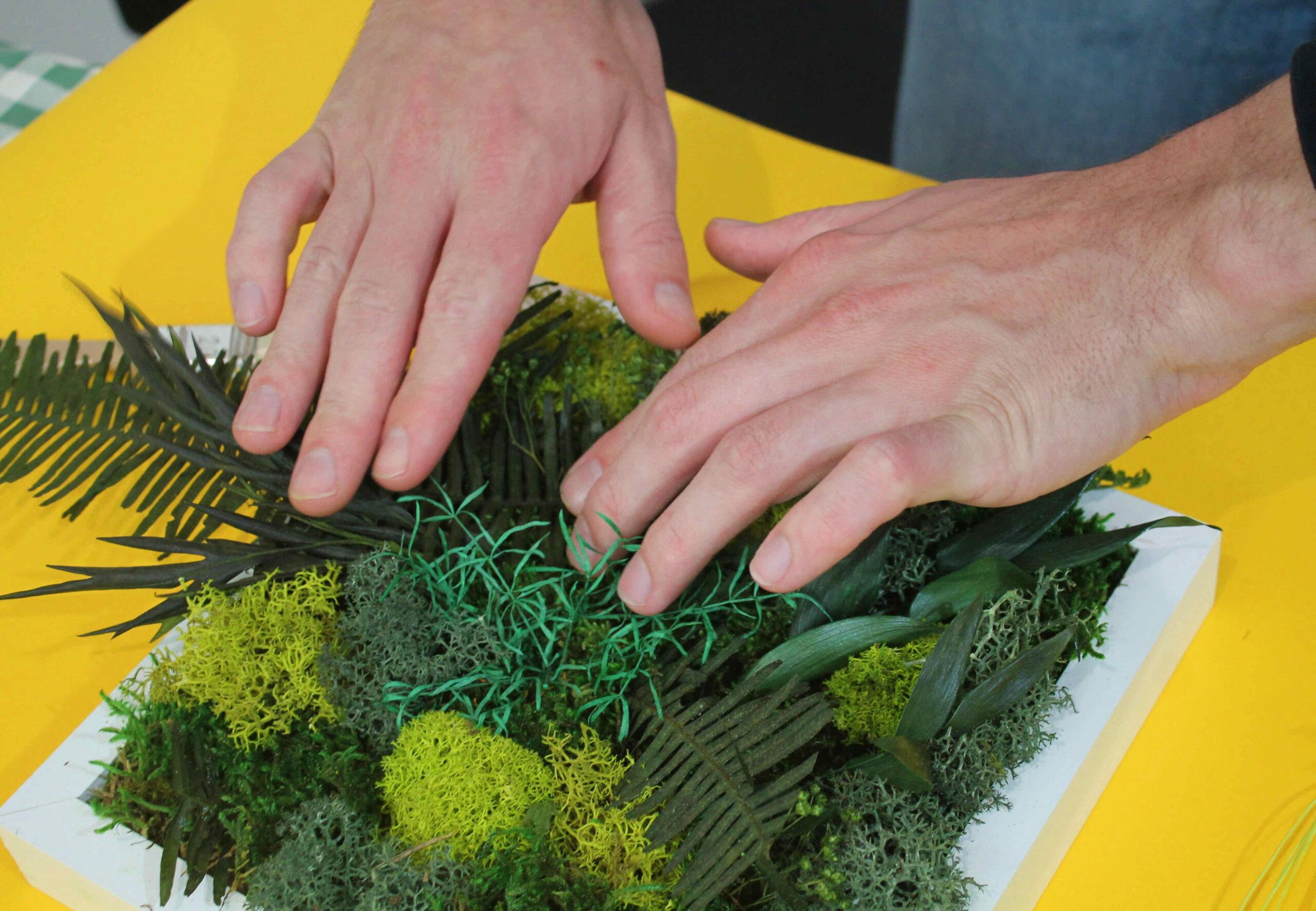 atelier cadre végétal