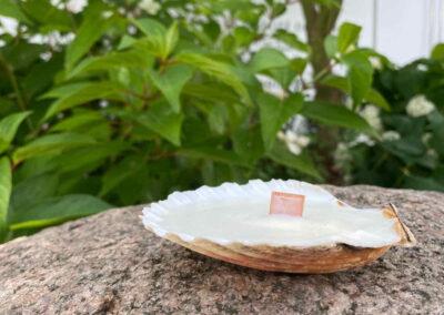 atelier diy bougie naturelle et parfumée Lyon